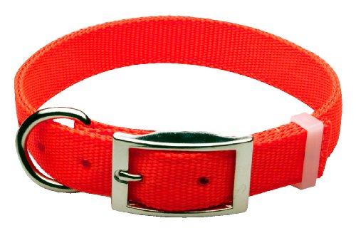 Premier Nite Lite Reflexite Nylon Collar in Blaze Orange, D-Ring in Front, 1″ x 21″, My Pet Supplies