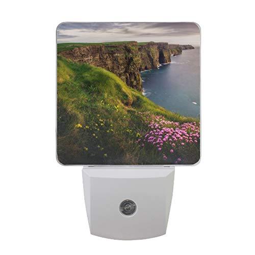 - Coastline Sea Flower Cliff Plug-in Led Night Light with Auto Dusk to Dawn Sensor,Warm White Lights for Hallway,Bedroom, Kids Room, Kitchen, Stairway