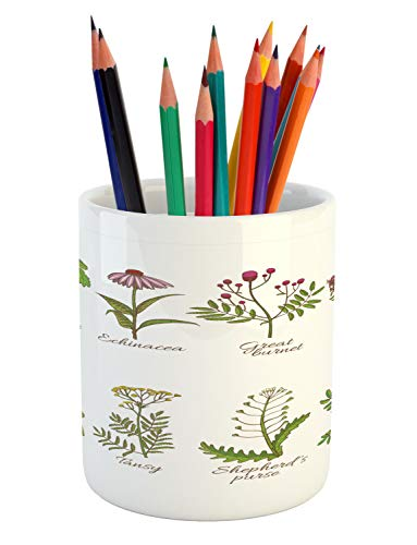 Lunarable Apothecary Pencil Pen Holder, Infographic of Colored Herbal Medicinal Plants Echinacea Great Burnet Wild Thyme, Printed Ceramic Pencil Pen Holder for Desk Office Accessory, Multicolor