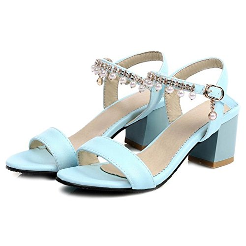 SJJH Sandals with Chunky Heel All Match Sandals for Casual Place Blue ct5WcLy