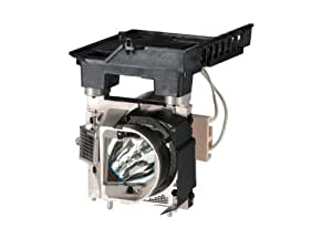 MicroLamp ML12264-Lámpara de proyector para NEC-230W, 2000horas-U250X, U260W, U250X G-Garantía: 6M