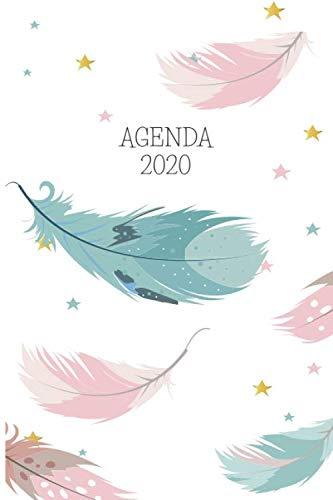 Agenda 2020: Plumas Planeador Anual Mensual Semanal de 6x9 ...
