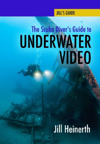 The Scuba Diver's Guide to Underwater Video (Best Camera For Skiing Photos)