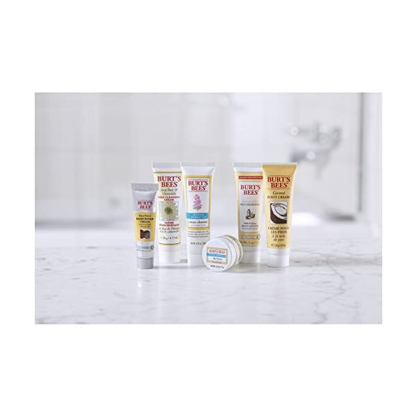 Burts Bees Fabulous Minis Travel Set 6 Travel Size Products Cream Cleanser Day Lotion Deep Cleansing Cream Body Lotion Foot Cream And Hand Repair Cream