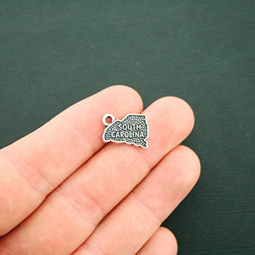 4 South Carolina Charms Antique Silver Tone 2 Sided State Charm ODSF-120