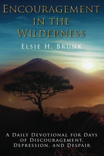 Encouragement Wilderness Devotional Discouragement Depression