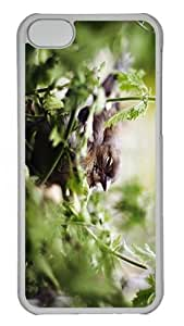 case underwater Little Brooding Bird PC Transparent case for iphone 5C