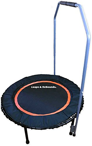 Leaps-Rebounds-Adjustable-Trampoline-Stabilizer-Bar-for-All-LR-Fitness-Trampolines-Bar-Only