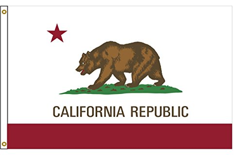 California 5ftx8ft Nylon State Flag 5×8 Made In USA 5'x8′