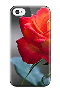 Susan Rutledge-Jukes's Shop Anti-scratch Case Cover Protective Orange Rose Case For Iphone 4/4s