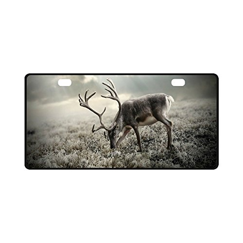 "Best Design Wild Deer Forest Durable Metal License Plate Frame for Women/Men Two Holes Car Tag (New) 11.8"" X 6.1"""