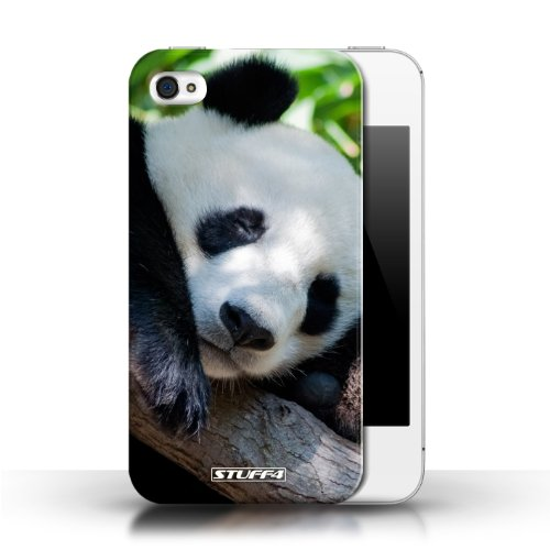 Hülle Case für Apple iPhone 4/4S / Pandabär Entwurf / Wilde Tiere Collection