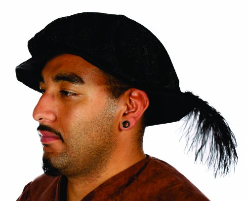 Alexanders Costumes Renaissance Hat with Feather, Black, One Size]()