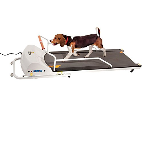 GOPET PetRun PR720F Dog Treadmill Indoor Exercise/Fitness Kit