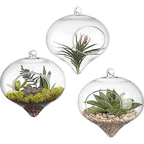 Euone Plant Pot , Flower Hanging Vase Glass Planter Plant Terrarium Container Home Wedding Decor