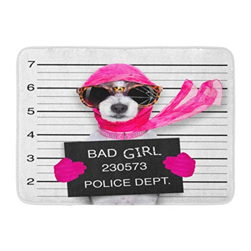 "DREAM-S Doormats Bath Rugs Outdoor/Indoor Door Mat Diva Lady Girl Dog Posing for Lovely Mugshot As Criminal and Thief Broken Sunglasses Scarf Bathroom Decor Rug 16"" x 24"""