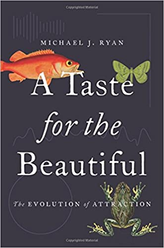A Taste For The Beautiful Evolution Of Attraction Michael Ryan 9780691167268 Amazon Books