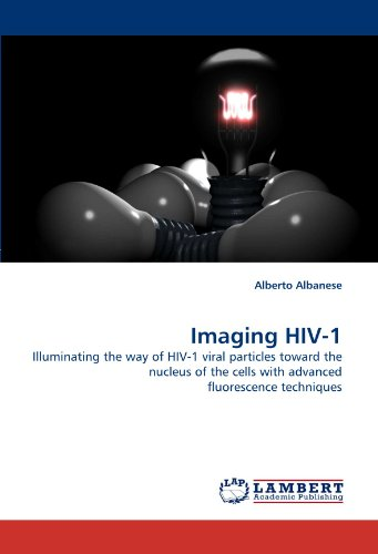 Imaging Hiv 1  Illuminating The Way Of Hiv 1 Viral Particles Toward The Nucleus Of The Cells With Advanced Fluorescence Techniques