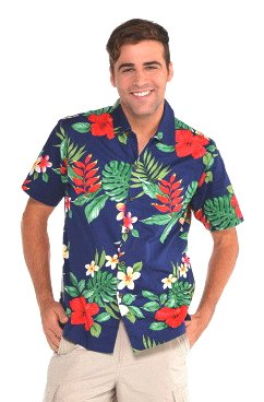 Buy Amscan Men S Hawaiian Shirt Summer Beach Luau Costume Dress Up