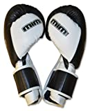 Ring to Cage Deluxe MiM-Foam Sparring Boxing Gloves