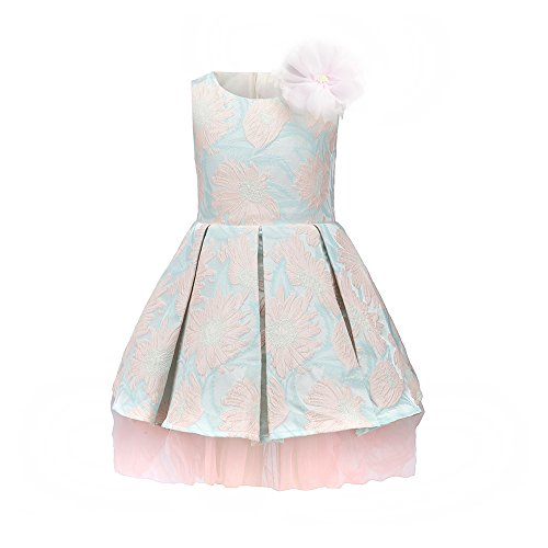childdkivy Little Girls Clothes Party Dress Toddler/Kid (10(7-8year), 71882P)