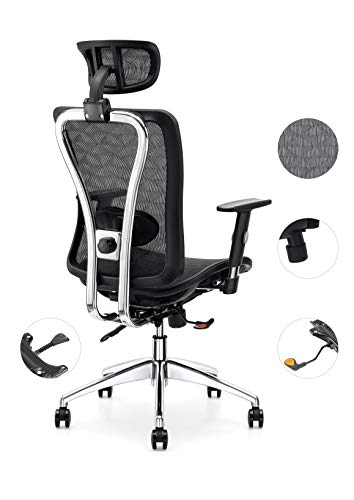 Cedric Office Chair,Breathable Mesh Computer Chair with Ergonomic Adjustable Lumbar Support, Black Swivel Desk Chair with Adjustable Armrest and Headrest, Mesh Seat, BIFMA-Certified