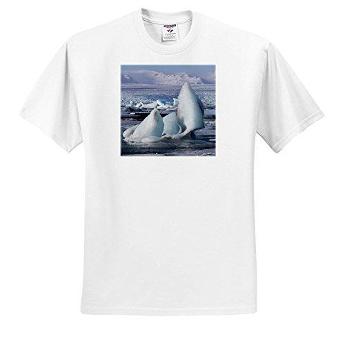 Danita Delimont - Icebergs - Iceland, Jokulsarlon. Vatnajokull Glacier Fills The Frozen Lagoon. - T-Shirts - Youth T-Shirt XS(2-4) (ts_277497_11) ()