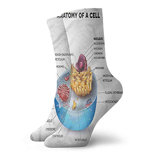 - Men's Socks Happy Funny Educational,Microscopic Parts 3.4