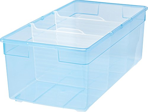 IRIS Divided Storage Box Blue