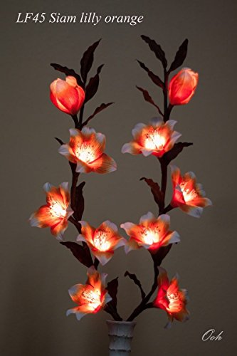Copter Shop Light Floral Craft Lighted Orange Siam Lilly Flowers Branch with 10 Lights, 84 cm. ( NOT INCLUDE FLOWER VASE ) (Patio Planner Block)