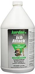 KORDON  #39461  Ich Attack for Aquarium, 1-Gallon