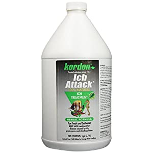 KORDON  #39462  Ich Attack for Aquarium, 1-Gallon ONLY 1