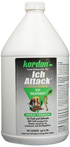KORDON  #39462  Ich Attack for Aquarium, 1-Gallon -