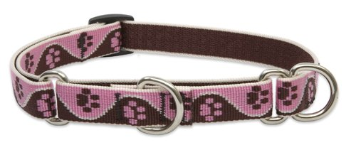 """LupinePet Originals 3/4"""" Tickled Pink 10-14"""" Martingale Collar for Small Dogs"""