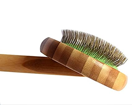 Amazon.com : Zhahender Lovely Pet Combs Pet Bathing Wooden Handle ...