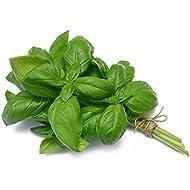 Organic Basil, 0.25 oz Clamshell