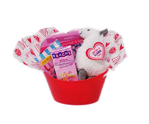 Youre-a-Llama-Fun-Valentines-Day-Themed-Candy-and-Plush-Gift-Basket