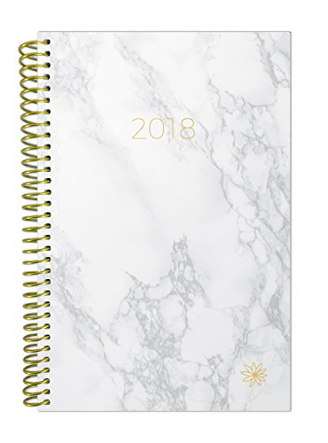 "bloom daily planners 2018 Calendar Year Daily Planner - Passion/Goal Organizer - Monthly and Weekly Datebook and Calendar - January 2018 - December 2018 - 6"" x 8.25"" - Marble"