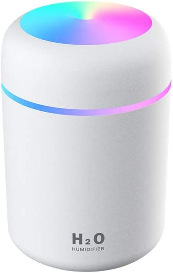 SALERA Portable Mini Ultrasonic Cool Mist Humidifier - USB-Powered - for Travel, Bedroom, Plants, Car, Home, Office - with Nightlight, 300ML Capacity, and Two Spray Modes (White)
