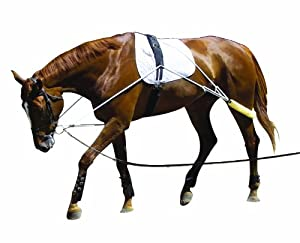Pessoa Training Aid Essential Lunging Tool Black Pony