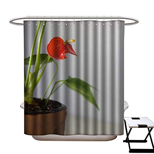 - CTdhuejkfro Funny Shower Curtain Red anthurium Known as tailflower Flamingo Flower and laceleaf Anthurium Andre in Brown Clay Pot Shower Curtain W72 x L72