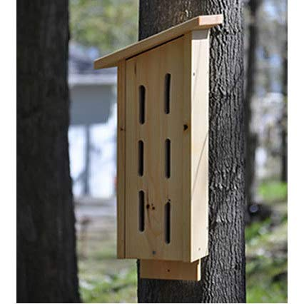 Urban Nature Store Handmade Butterfly House