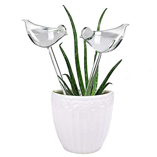 er Self Watering Globes, Hand Blown Clear Glass Plant Water Bulbs for Indoor & Outdoor, 2 Birds ()