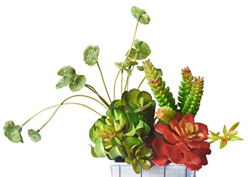 Mixed Fake Artificial Succulent Plants 7 Pcs Mixed Unpotted Fake Green Stems for DIY Home Garden Wall Decor Flower Arrangement decorative desk plant, shelf decor, small decorations for living room by Y.M