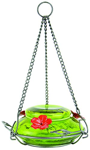Nature's Way Bird Products MHF5 Modern Top Fill Hummingbird Feeder, 18 Ounce Capacity, - Glass Beautiful Crackle