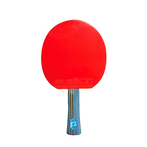 - T&R sports Double Fish 3A Racket Ping Pong Bat Advanced Training Table Tennis Paddle Long Handle Shakehand …