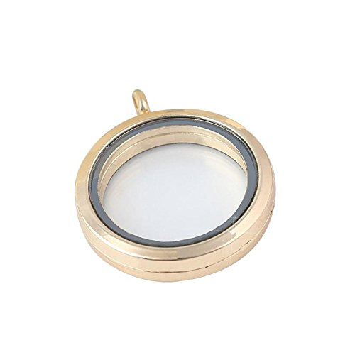 [Necklace, Hatop Round Floating Charm Memory Locket Necklace Pendants Glass Phase Box (Gold)] (Diy Incredibles Costume)