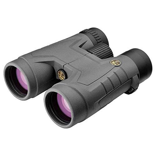 Leupold 172700 Bx-2 Acadia Roof Binoculars, Grey, 10 x 42mm