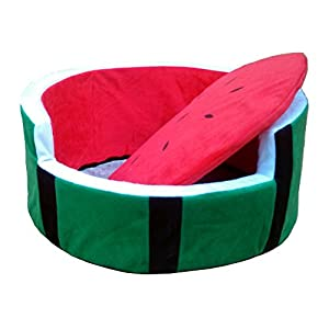 Amazon.com : Creation Core Sponge Watermelon Shaped Soft