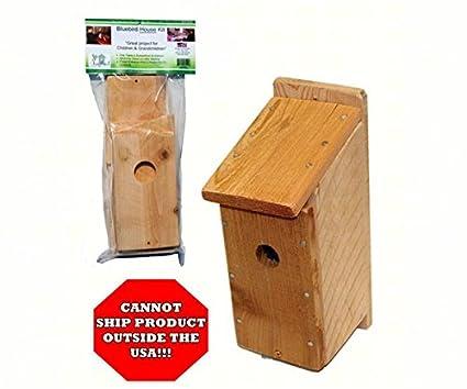 Amazon songbird essentials diy build a birdhouse bluebird kit songbird essentials diy build a birdhouse bluebird kit made of cedar wood great project solutioingenieria Gallery